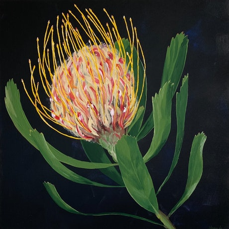 (CreativeWork) Protea by Johanna Fry. Acrylic Paint. Shop online at Bluethumb.