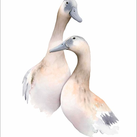 (CreativeWork) A Mischievous Pair Ed. 1 of 60 by Nadine Dudek. Print. Shop online at Bluethumb.