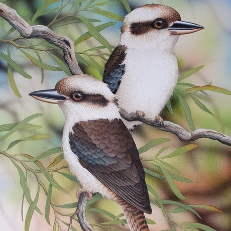 (CreativeWork) Kookas by Lyn Cooke. Watercolour Paint. Shop online at Bluethumb.