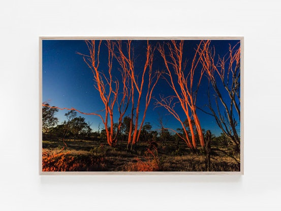 (CreativeWork) Wimmera Nights by Aldona Kmieć. Photograph. Shop online at Bluethumb.