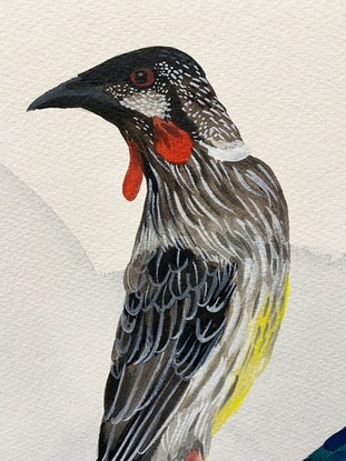 (CreativeWork) Wattlebird Japonica 2020 by Sally Browne. Watercolour Paint. Shop online at Bluethumb.