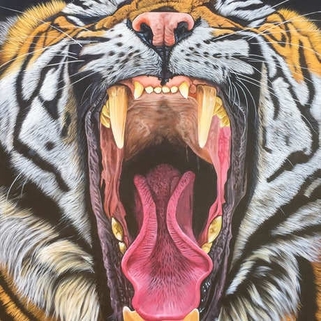 (CreativeWork) Open Wide by Stephen Thompson. Acrylic. Shop online at Bluethumb.