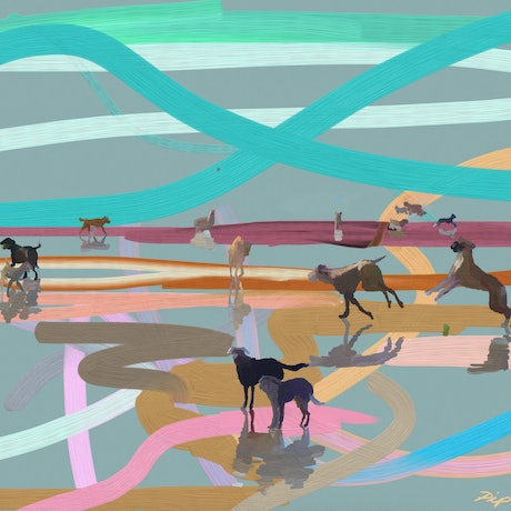 (CreativeWork) Heaven is a Dog Beach - Scribble Beach Series Ed. 5 of 25 by Pip Phelps. Print. Shop online at Bluethumb.