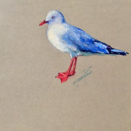 (CreativeWork) Seagull by Mirjana Psakis. Oil Paint. Shop online at Bluethumb.