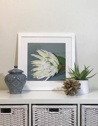 (CreativeWork) Brian's Beauties Limited Edition Giclee Print Ed. 7 of 100 by Hayley Kruger. Print. Shop online at Bluethumb.