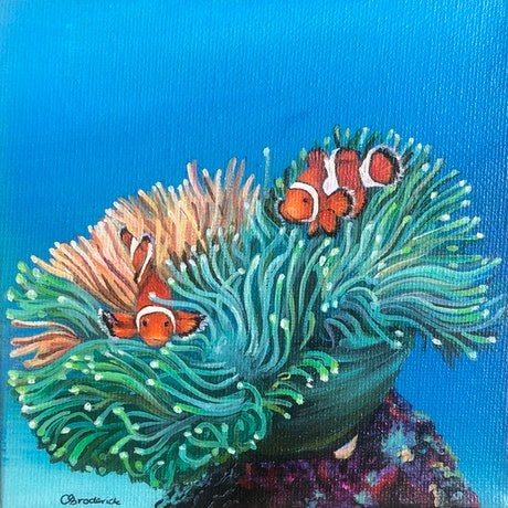 (CreativeWork) Clown Fish by Caitlin Broderick. Oil Paint. Shop online at Bluethumb.