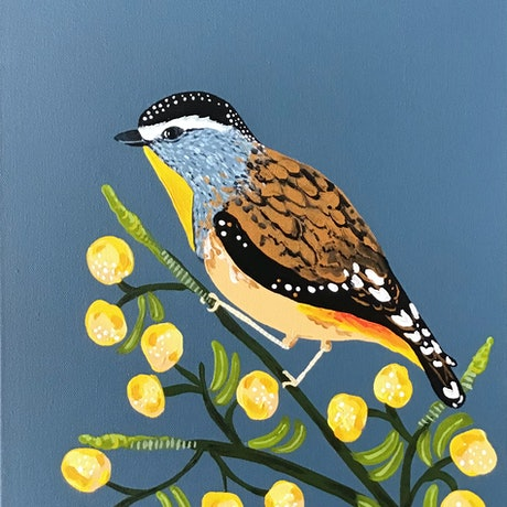 (CreativeWork) Spotted Pardalote bird by emma whitelaw. Acrylic Paint. Shop online at Bluethumb.