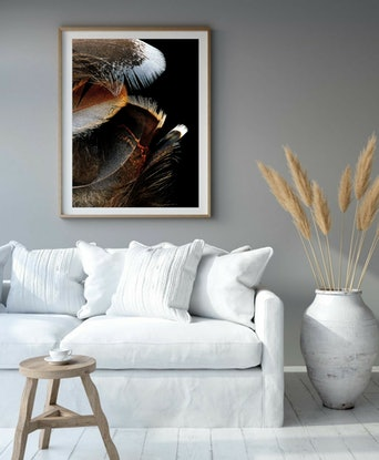 (CreativeWork) Birds of a Feather Ed. 1 of 50 by Nadia Culph. Photograph. Shop online at Bluethumb.