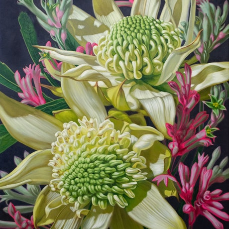 (CreativeWork) Green Waratahs with Pink Kangaroo Paws by Fiona Craig. Oil Paint. Shop online at Bluethumb.