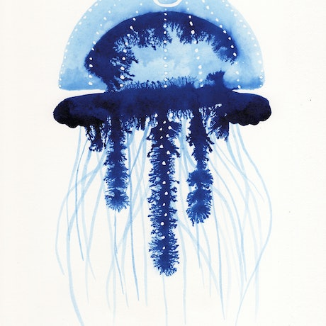 (CreativeWork) Jelly No.4 – A4 Watercolour by Clare McCartney. Watercolour Paint. Shop online at Bluethumb.