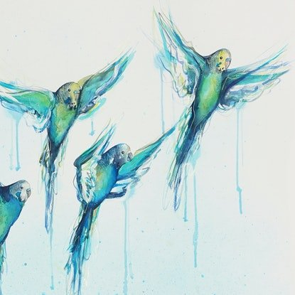 (CreativeWork) A Flying Flock To Give (of Budgies) - Watercolour Birds Painting on Paper by Leni Kae. Watercolour. Shop online at Bluethumb.