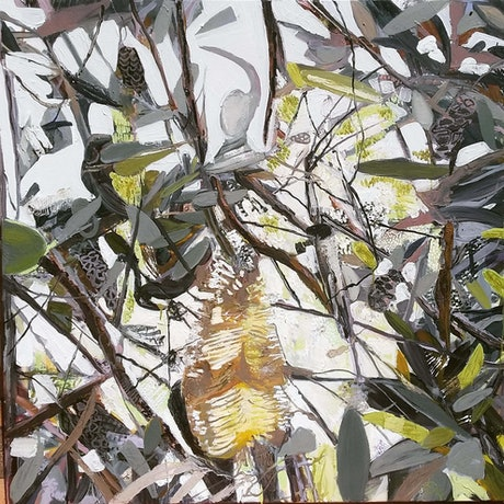 (CreativeWork) Banksia blooms by Elizabeth Mead. Oil Paint. Shop online at Bluethumb.