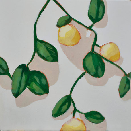 (CreativeWork) Lemons by Brianna Gittos. Acrylic Paint. Shop online at Bluethumb.
