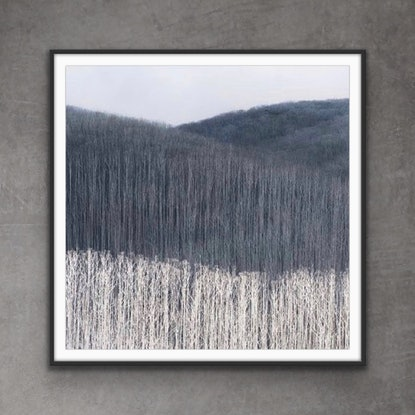 (CreativeWork) Stand  By Me Ed. 4 of 50 by Ushi Grant. Photograph. Shop online at Bluethumb.