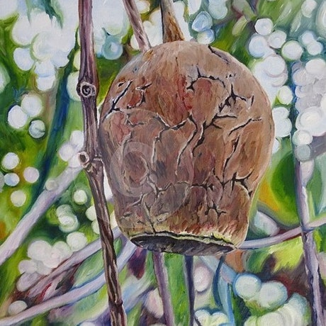 (CreativeWork) Nutz 1 by Delma White. Oil Paint. Shop online at Bluethumb.