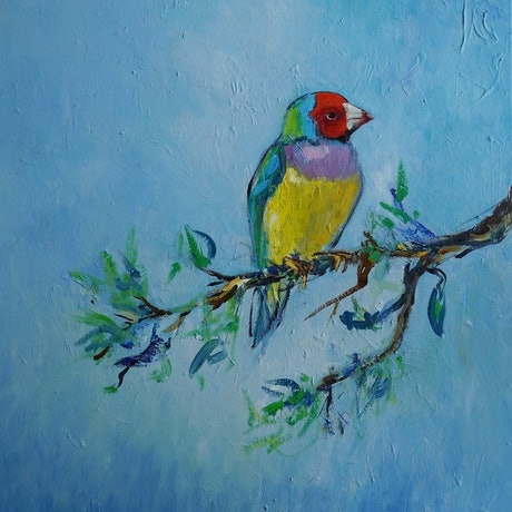 (CreativeWork) Gouldian Finch by Katerina Apale. Oil Paint. Shop online at Bluethumb.