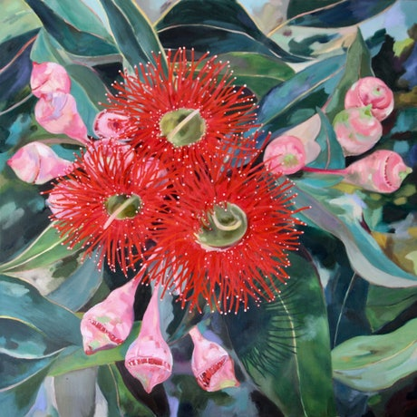 (CreativeWork) The Blushing and the Brave  (corymbia ficifolia) by Jackie Moss. Oil Paint. Shop online at Bluethumb.