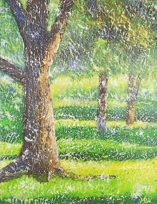 (CreativeWork) Light Through the Trees by Melanie-Anne Slootjes. Acrylic Paint. Shop online at Bluethumb.
