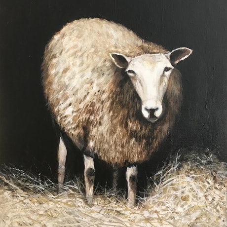 (CreativeWork) SHEEP IN A BARN by LOUISE GROVE WIECHERS. Acrylic Paint. Shop online at Bluethumb.