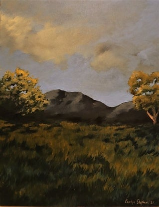 (CreativeWork) Two tree hill by Carolyn Stephens. Acrylic Paint. Shop online at Bluethumb.