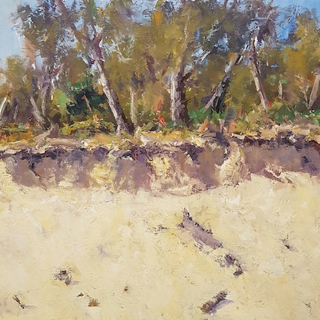 (CreativeWork) Midday on the Sand Dunes. Coolum Beach.Qld by Barry Back. Oil Paint. Shop online at Bluethumb.