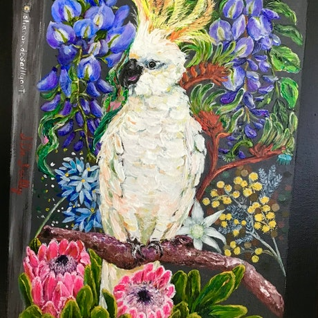Yellow crested cockatoo, native flowers, wisteria, Spring blooms.