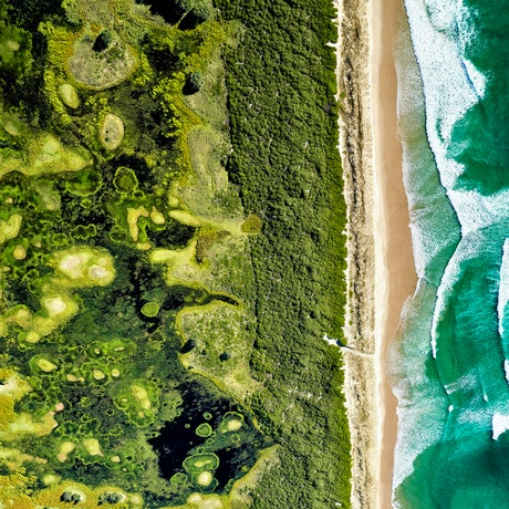 Complex vegetation patterns behind a beach in northern New South Wales, Australia
