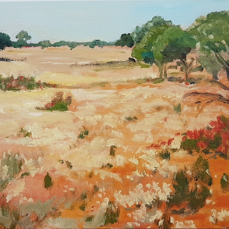 (CreativeWork) MULLEWA MEADOW by Suzy Strout. Acrylic Paint. Shop online at Bluethumb.