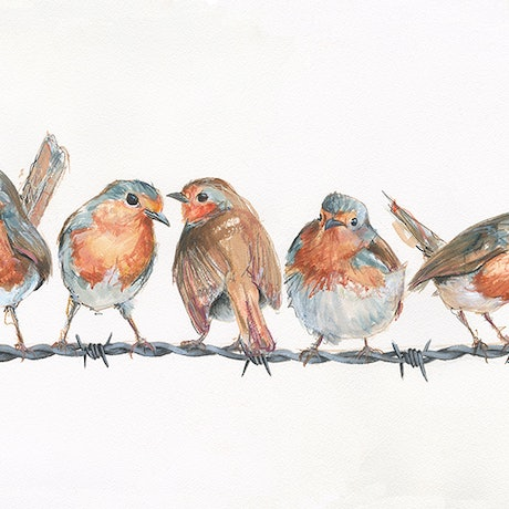 (CreativeWork) Robins On A Wire Ed. 6 of 55 by Rebecca Hill. Print. Shop online at Bluethumb.