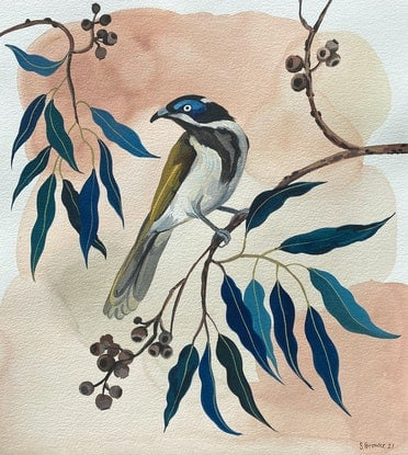 (CreativeWork) Blue faced Honey Eater and Cadaga by Sally Browne. Watercolour Paint. Shop online at Bluethumb.