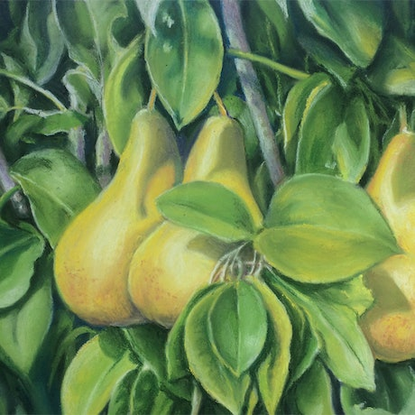(CreativeWork) A Perfect Pairing - Pear Tree by Jillian Crider. Other Media. Shop online at Bluethumb.
