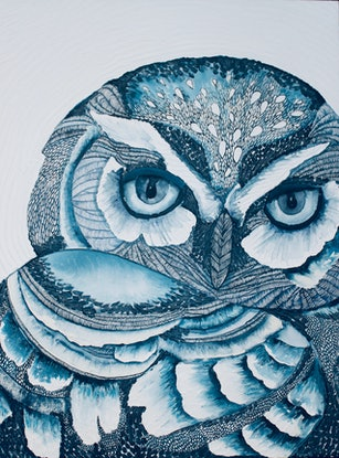 (CreativeWork) Short Eared Owl  by Karen Sentonaris. Mixed Media. Shop online at Bluethumb.