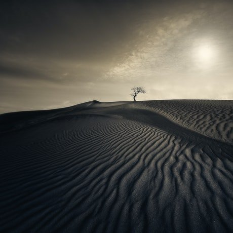 (CreativeWork) Desert Waves Ed. 6 of 200 by Nick Psomiadis. Photograph. Shop online at Bluethumb.