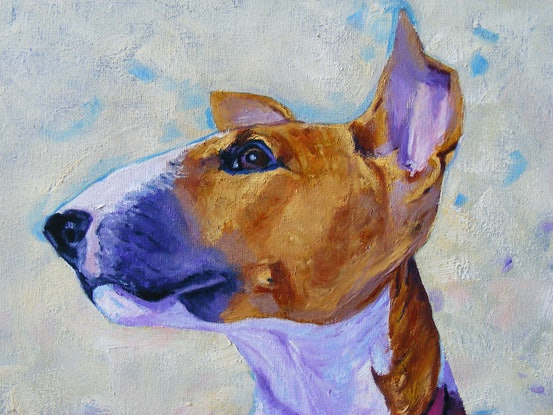 """(CreativeWork) """"A Young Bull Terrier"""" by Daniela Selir. Oil Paint. Shop online at Bluethumb."""