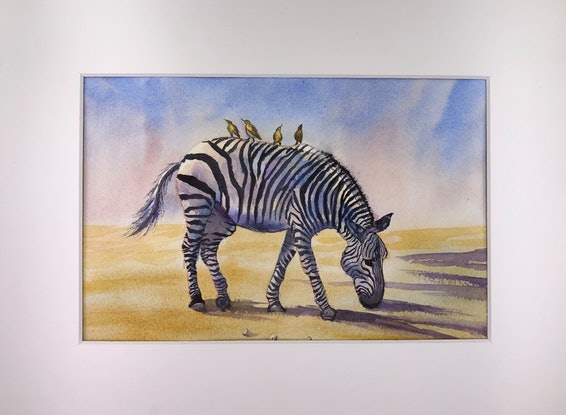 (CreativeWork) Original watercolour painting of Zebra with  birds sitting on the back. Cute wild lifes by Helena Liu. Watercolour Paint. Shop online at Bluethumb.