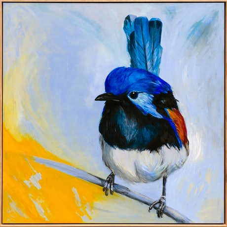 (CreativeWork) Variegated Fairy-wren by Lydie Paton. Mixed Media. Shop online at Bluethumb.