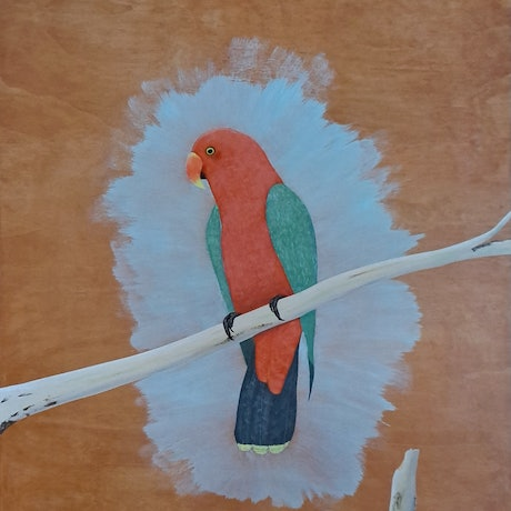 (CreativeWork) King Parrot by Barry Johnson. Acrylic Paint. Shop online at Bluethumb.