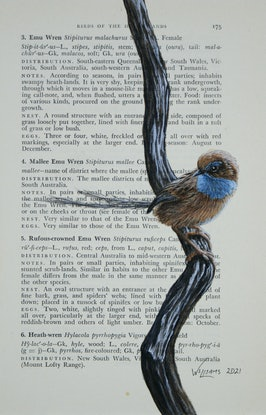 (CreativeWork) Southern Emu-Wren on vintage (1951) page from 'What Bird is That?' by Neville W. Cayley by Craig Williams. Acrylic Paint. Shop online at Bluethumb.