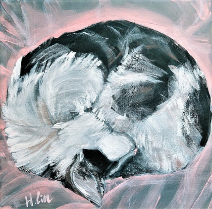 (CreativeWork) Daydreamer - Cadbury The Cat  by HSIN LIN. Acrylic Paint. Shop online at Bluethumb.