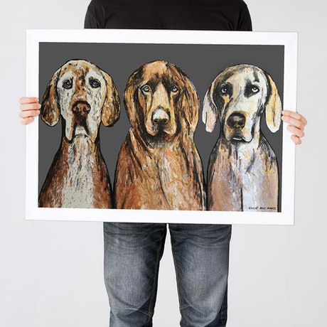 (CreativeWork) 3 Amigos (Print) by Gillie and Marc Schattner. Print. Shop online at Bluethumb.