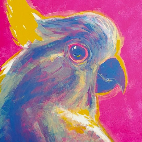 (CreativeWork) Galah  by Rebecca Read. Acrylic Paint. Shop online at Bluethumb.