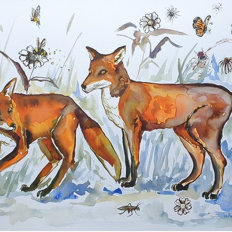 (CreativeWork) The Clever Foxes by Liz H Lovell. Watercolour Paint. Shop online at Bluethumb.