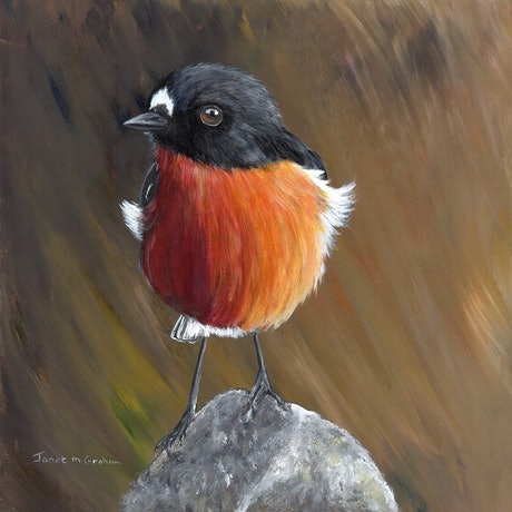 (CreativeWork) Flame Robin by Janet Graham. Acrylic Paint. Shop online at Bluethumb.
