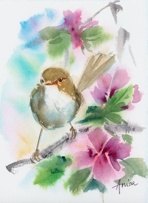 (CreativeWork) Jenni Wren (for Lindy) by Anica Amphlett. Watercolour Paint. Shop online at Bluethumb.