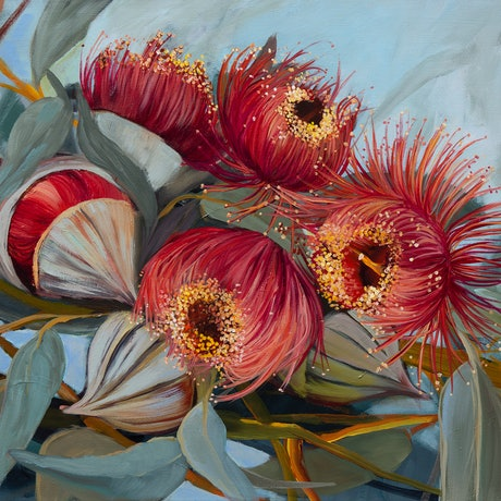 (CreativeWork) Rose Mallee by Gosia Orzechowska. Acrylic Paint. Shop online at Bluethumb.