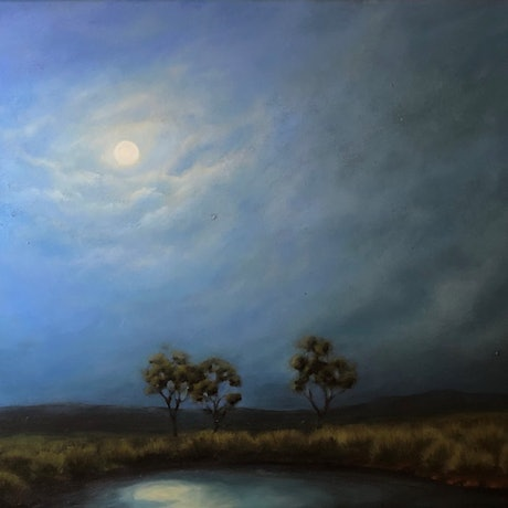 (CreativeWork) Night by Carolyn Stephens. Acrylic Paint. Shop online at Bluethumb.
