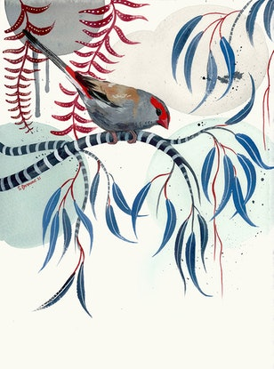 (CreativeWork) Red Browed Finch 2021 by Sally Browne. Watercolour Paint. Shop online at Bluethumb.
