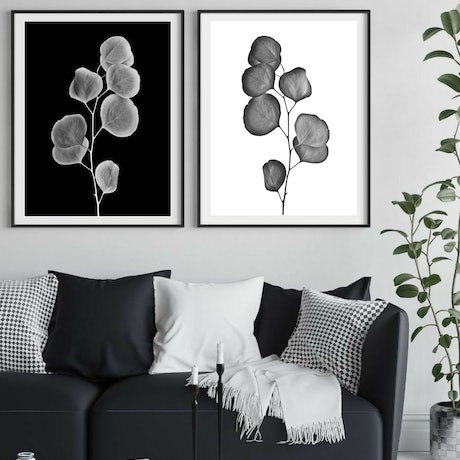 (CreativeWork) Silver Dollar Diptych ~ Black and White  Ed. 1 of 50 by Nadia Culph. Photograph. Shop online at Bluethumb.