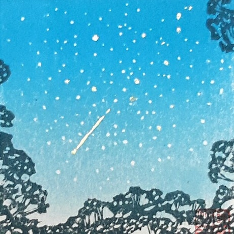 (CreativeWork) Shooting Star by MARION NELSON. Other Media. Shop online at Bluethumb.