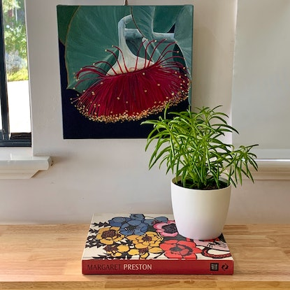 (CreativeWork) Ruby Delight by Hayley Kruger. Acrylic Paint. Shop online at Bluethumb.